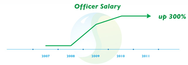 Consulting Firm Officer Salary